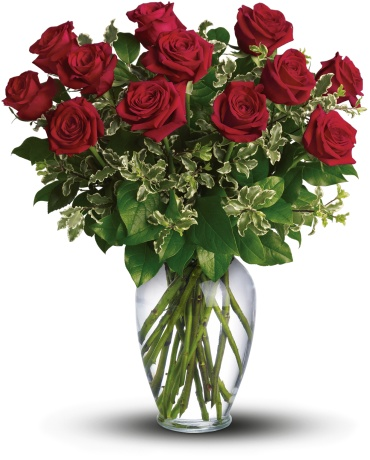 La Vie En Rose - Long Stemmed Red Roses